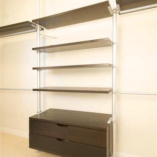 Idee per una grande cabina armadio minimalista con ante lisce, ante in legno bruno, moquette e pavimento beige