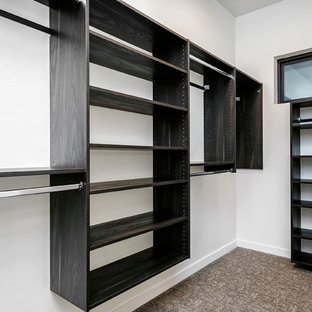 Mid-sized modern gender-neutral walk-in wardrobe in Boise with flat-panel cabinets, black cabinets, carpet and beige floor.