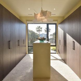 Idee per una grande cabina armadio unisex minimal con ante lisce, ante marroni, moquette e pavimento beige