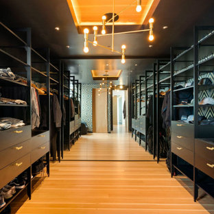 Closet - contemporary medium tone wood floor and brown floor closet idea in Other with flat-panel cabinets and black cabinets