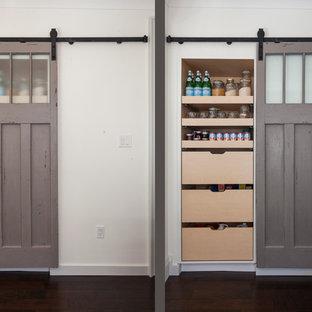 Diseño de armario bohemio, de tamaño medio, con armarios con paneles empotrados, puertas de armario grises y suelo de madera oscura