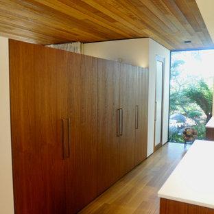 Diseño de vestidor madera, minimalista, con armarios con paneles lisos, puertas de armario de madera oscura y suelo de madera en tonos medios