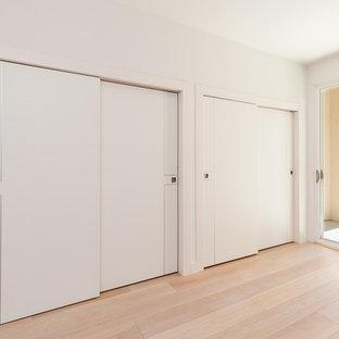Modelo de armario moderno con suelo de madera clara y suelo marrón
