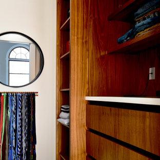 Mittelgroßer Moderner Begehbarer Kleiderschrank mit flächenbündigen Schrankfronten, braunen Schränken, Teppichboden und grünem Boden in Indianapolis