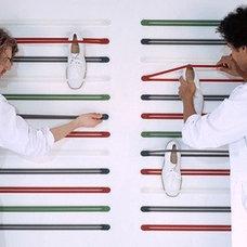 Closet shoe storage - Droog straps @ AllModern.com