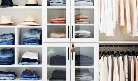 How to Get Rid of Clothes Moths... and Prevent Them in Future