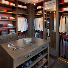 Contemporary Closet by Steilish LLC