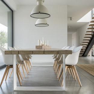 Foto de comedor minimalista, grande, con paredes blancas, suelo de cemento y suelo gris
