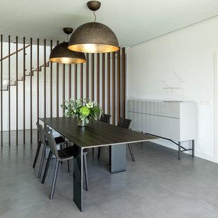 Ejemplo de comedor contemporáneo con paredes blancas, suelo de cemento y suelo gris