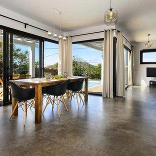Foto de comedor minimalista, abierto, sin chimenea, con paredes blancas, suelo de cemento y suelo gris