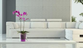 Orquídeas, las protagonistas de tu casa!
