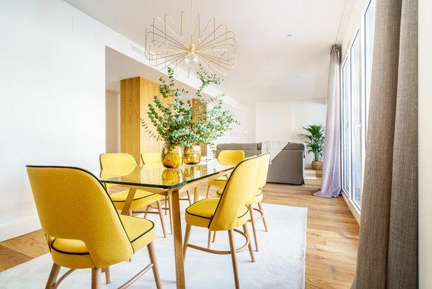 Contemporary Dining Room by Constanza Subijana/HS DECOR