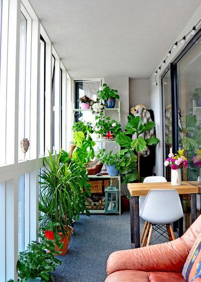 Eklektisch Wintergarten by Amelia Hallsworth Photography