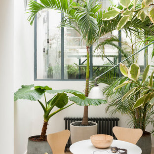 Inspiration for a small tropical ceramic tile sunroom remodel in London with a skylight and no fireplace