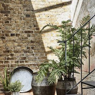 Industrial Ambition | Indoor Greenery