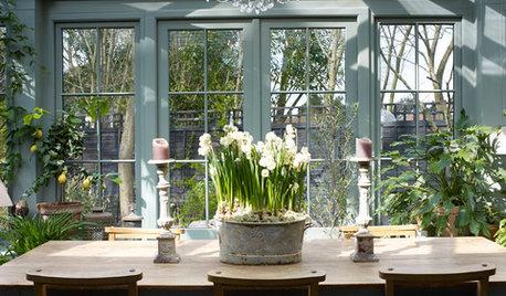 Des fleurs odorantes pour votre table du réveillon