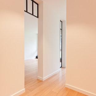 Новые идеи обустройства дома: маленький коридор в классическом стиле с белыми стенами и светлым паркетным полом