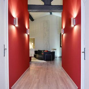 リヨンの中サイズのコンテンポラリースタイルのおしゃれな廊下 (赤い壁、淡色無垢フローリング、ベージュの床) の写真