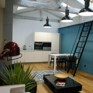 Aménagement d'une cuisine ouverte linéaire éclectique de taille moyenne avec un placard à porte plane, des portes de placard blanches, un électroménager en acier inoxydable, un sol en bois clair et aucun îlot.