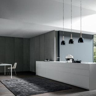 Cette image montre une cuisine américaine linéaire design avec un placard à porte plane et un îlot central.