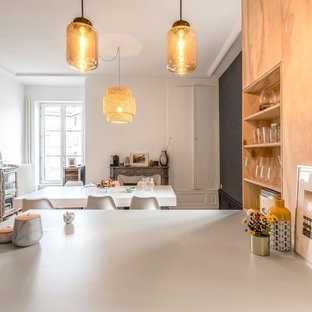 クレルモン・フェランの中サイズのコンテンポラリースタイルのおしゃれなキッチン (インセット扉のキャビネット、緑のキャビネット、ラミネートカウンター、緑のキッチンパネル、淡色無垢フローリング、緑のキッチンカウンター) の写真