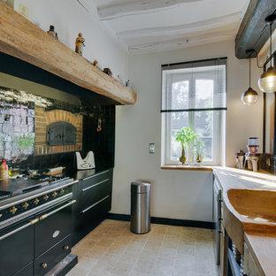 Cette photo montre une cuisine nature.