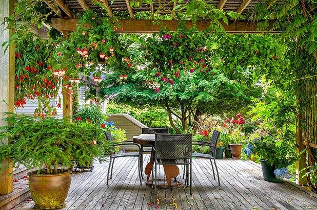 Classique Terrasse en Bois by RD Interiors