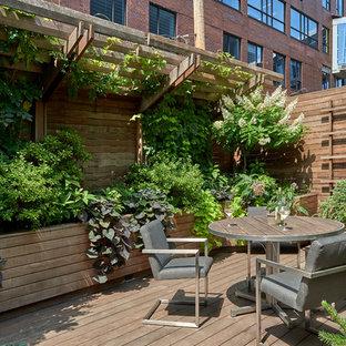 Modern inredning av en mellanstor takterrass, med en vertikal trädgård