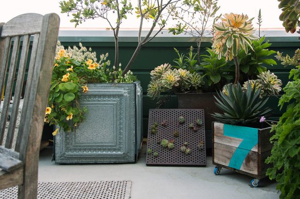 Potted Garden 10 repurposed containers for a one of a kind potted garden eclectic deck by margot hartford photography workwithnaturefo