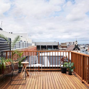 Design ideas for a contemporary rooftop deck in Melbourne with a container garden and no cover.