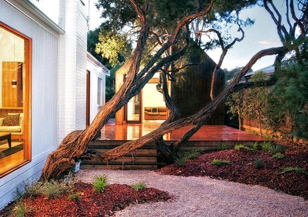 Contemporary Deck by Auhaus Architecture