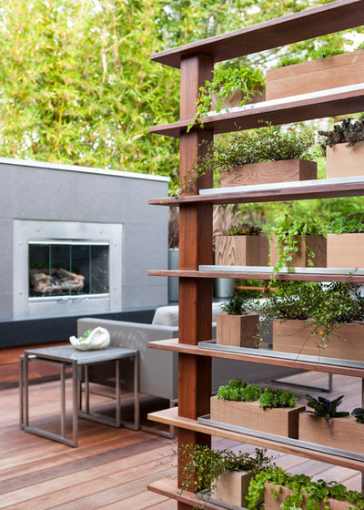 Contemporaneo Terrazza by Scot Eckley, Inc.