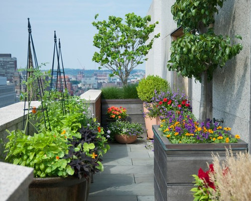 SaveEmail. Boston, MA Penthouse Rooftop Garden. 20 Saves | 0 Questions
