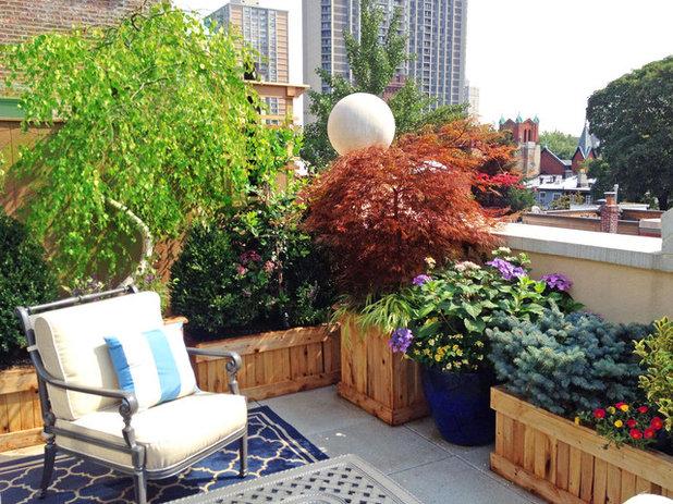 Klassisch Terrasse by Amber Freda Garden Design