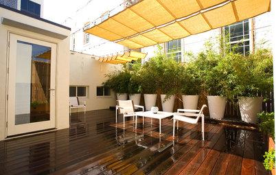 Micro Gardens for Urban Living