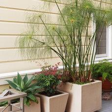 Contemporary Deck by Arterra Landscape Architects