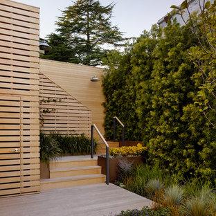 Foto de terraza actual, de tamaño medio, sin cubierta, en patio trasero, con jardín vertical