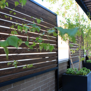 Inspiration for a large contemporary rooftop deck container garden remodel in Chicago with a pergola