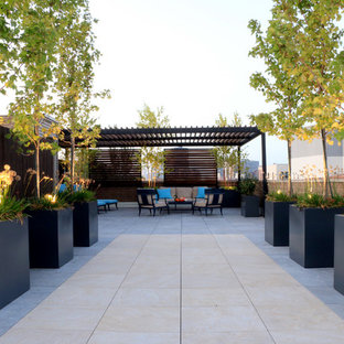 Large trendy rooftop deck container garden photo in Chicago with a pergola