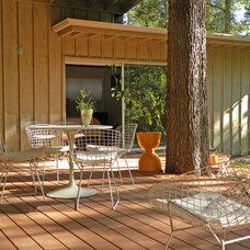 Midcentury Deck by Sarah Greenman
