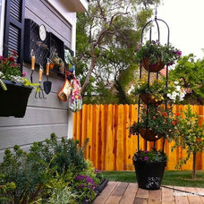 Traditional Deck by Shirley Bovshow