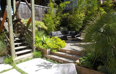 Patio Details: Good-bye Cracked Concrete, Hello Lush Garden
