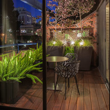 Transitional Deck by Case + Abst Architects