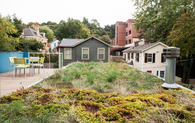 4 Ways Green Roofs Help Manage Stormwater
