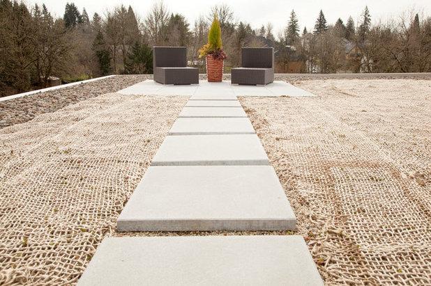 Minimalistisch Terrasse by Whitney Lyons