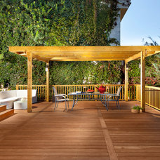 Contemporary Deck by Elad Gonen