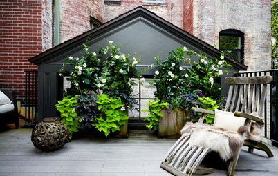 How to Choose the Right Plant Container