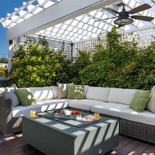 Idee per una terrazza chic sul tetto con un giardino in vaso e una pergola