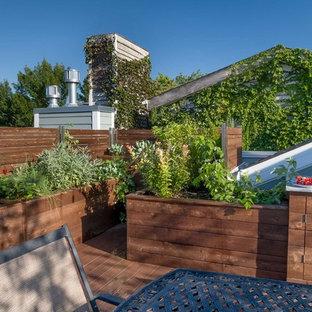 Deck - transitional deck idea in Chicago