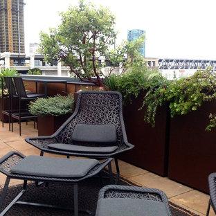 Idee per una terrazza industriale di medie dimensioni e sul tetto con un giardino in vaso